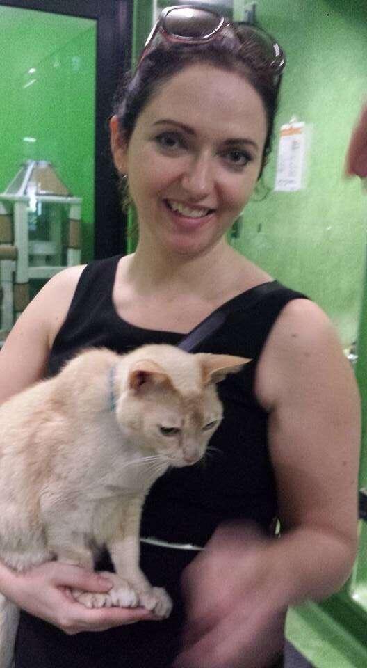 senior cat loves new mom