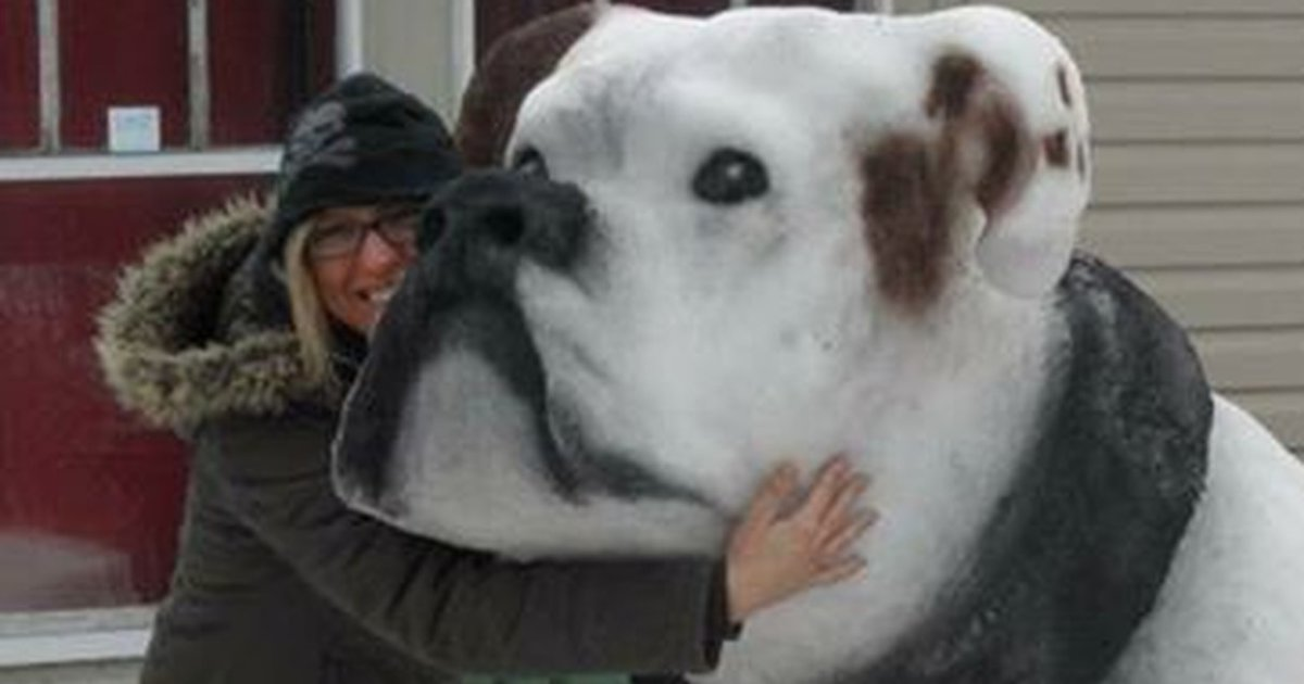 Incredible Snow Sculptures That Actually Look Like Real Animals