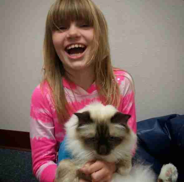 therapy cat loves working with kids
