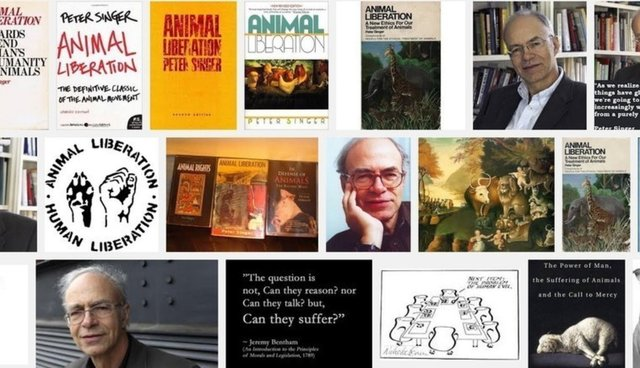 peter singer on the animal rights revolution decades after he  peter singer on the animal rights revolution 4 decades after he started it