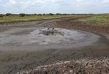 Mud pit in Kenya where orphaned hippo was stuck