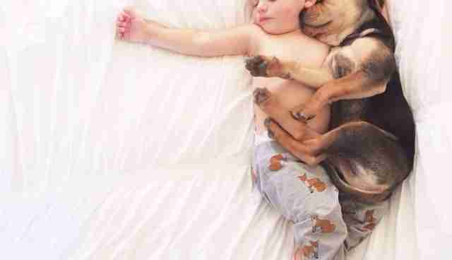 Months Later This Toddler And His Puppy Still Nap Adorably - Toddler naps with puppy