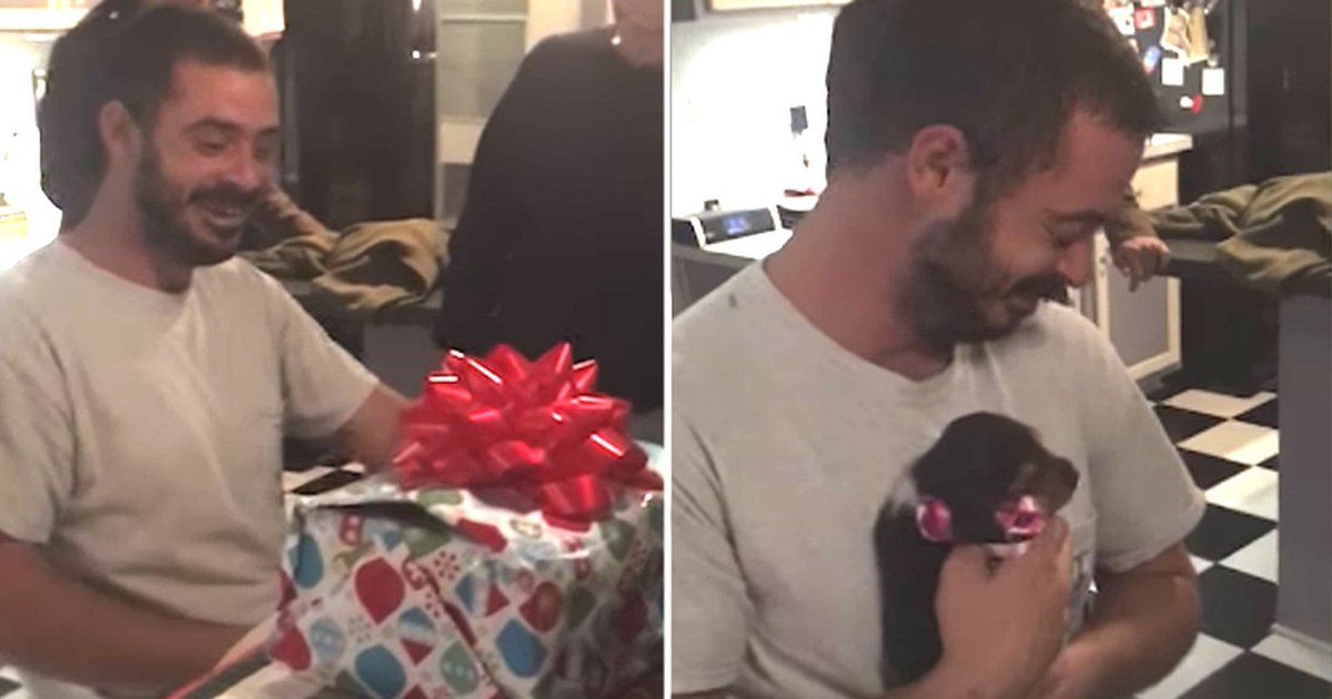 The Perfect Christmas Present.Veteran Gets The Perfect Christmas Present To Help Him Heal