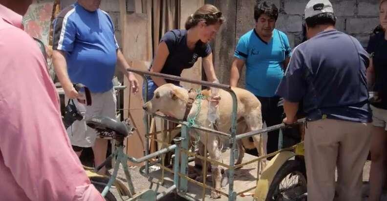 Escot gets onto the 'ambulance' bike