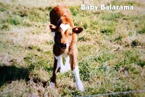 Balarama when he was 4 months old