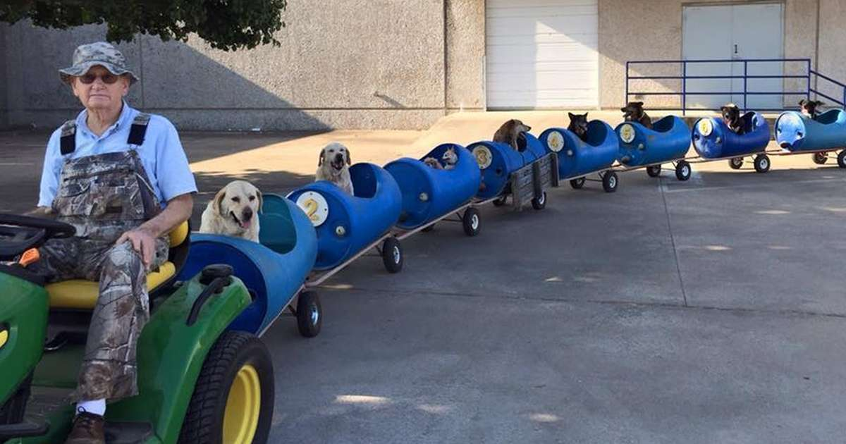 Man Builds 'Dog Train' To Take Rescued Pups Out On Little Adventures