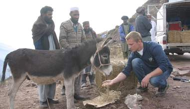 Celebrity vet Scott Miller tends to a donkey