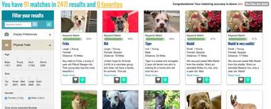 website matches people with rescue dogs