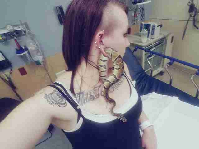 snake in earlobe