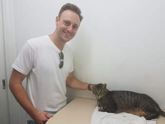 man finds cat after 11 years