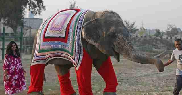 Sanctuary Sweater