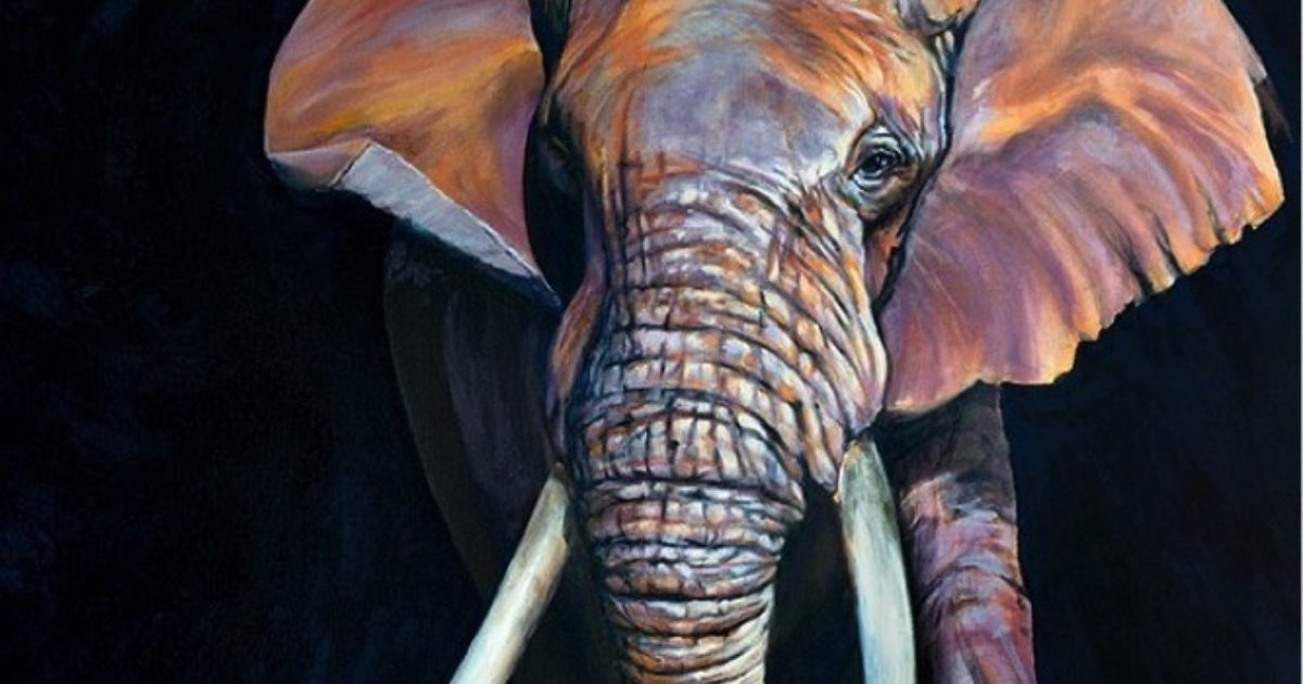 The Truth About Tusks The Dodo