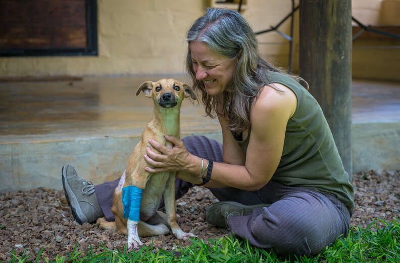 paralyzed puppy drags herself for miles to find help