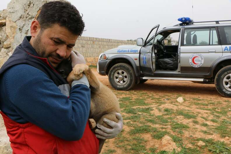 'Cat man' of Aleppo holding puppy he's saving