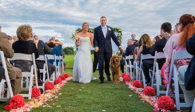 Dog Serves As Best Man In Veterans Wedding The Dodo