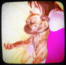 Denes snuggling her dog, before he was stolen in burglary