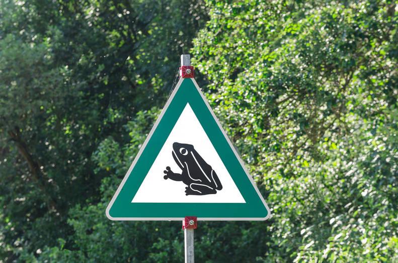 Indoor//Outdoor ROADKILL Street Sign animals killed cars trucks street