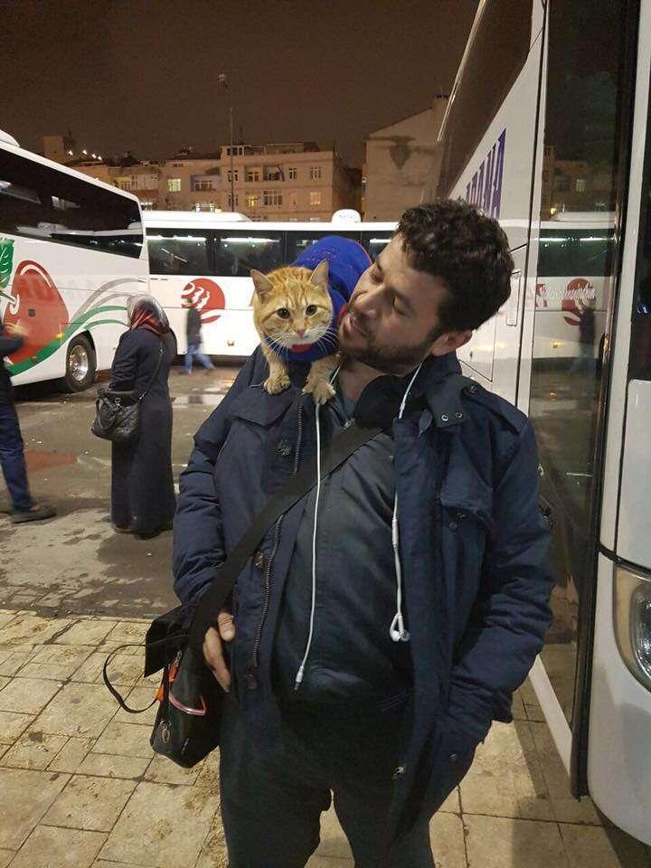 Alaa fleeing to Turkey