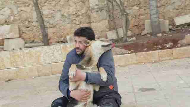 Cat man of Aleppo and his rescue dog
