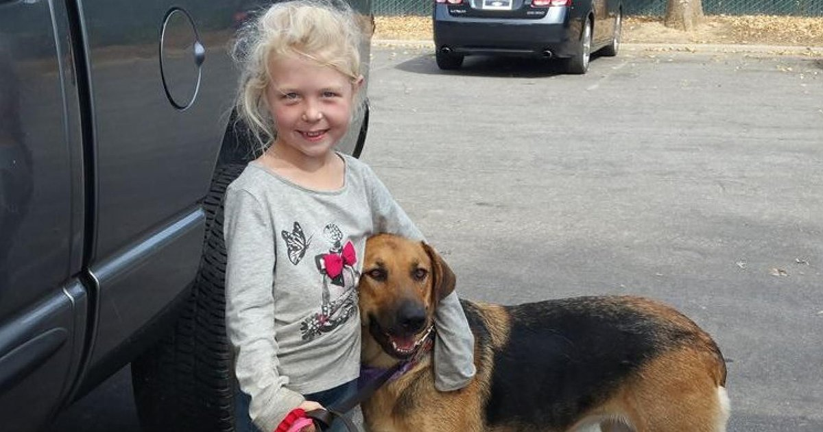 Little Girl Saves Dog Who Refused To Be Rescued - The Dodo-5531