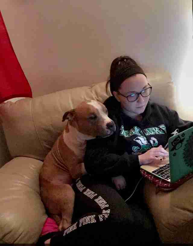 Russ the pit bull hugging his new mom, Kayla