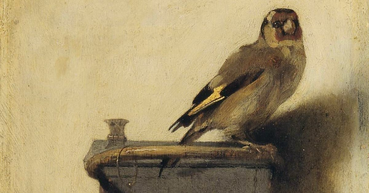 The Story Behind The Chained Bird In The Goldfinch The Dodo