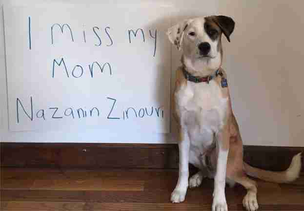 Dexter the dog misses his mom