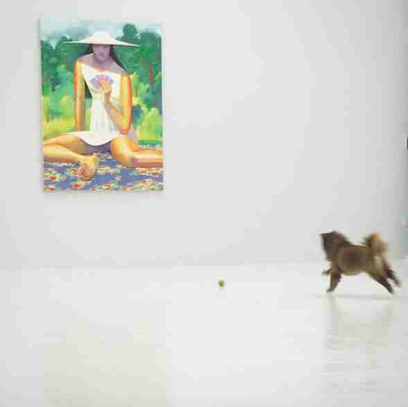 rescue dog works in an art gallery