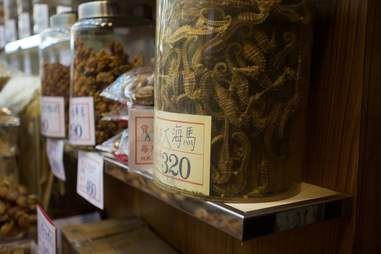 Seahorses being sold at a dry seafood store in Hong Kong