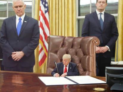 100 days of trump memes