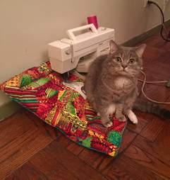 rescue cat helping sew handmade blankets for shelter animals