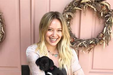 Hilary Duff adopts a puppy