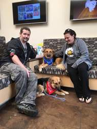 Bonded shelter dogs with couple who adopted them