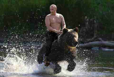 shirtless putin riding a bear