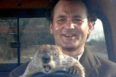 groundhog day movie