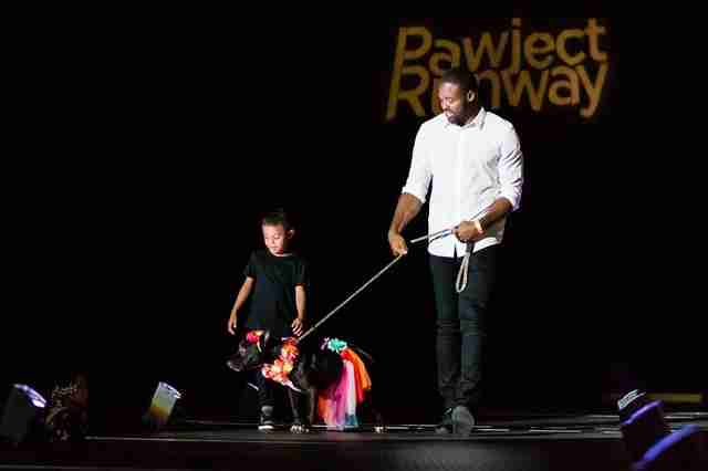 torrey smith at pawject runway 2017