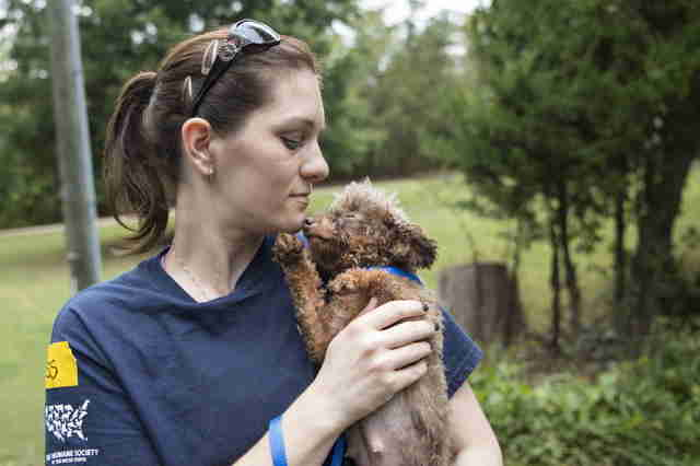 Rescuer with puppy mill dog