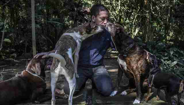 glenn greenwald with his rescue dogs