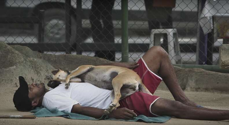 a homeless man with his dog