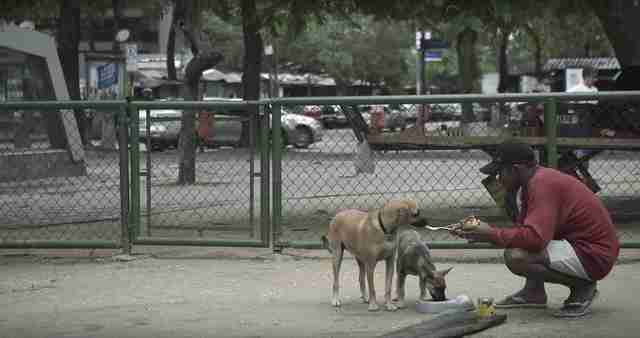 still from field of vision birdie man feeding dog on street