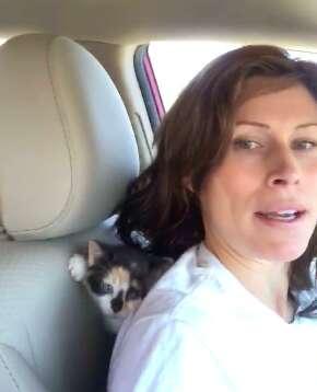 Tiny unwanted kitten adopts woman