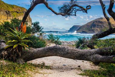 Coffee Bay in the Wild Coast, Republic South Africa