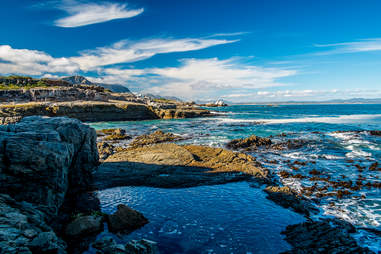 Hermanus, Cape Town, South Africa