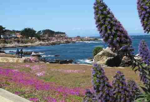 Monterey Bay Coast