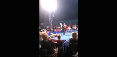Ukraine circus bear performing