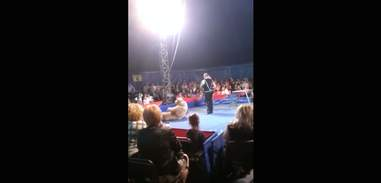 Ukraine circus bear before lunging at audience