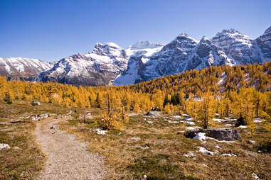 Larch Valley, Near Lake Louise, Banff National Park, Alberta, Canada