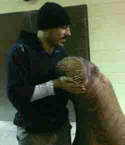Phil Demers with Smooshi the walrus