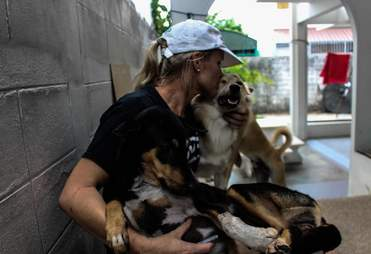 Woman with rescued dogs in Thailand