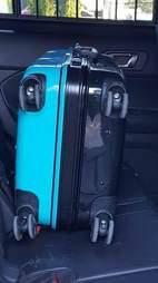 Hard suitcase containing dog